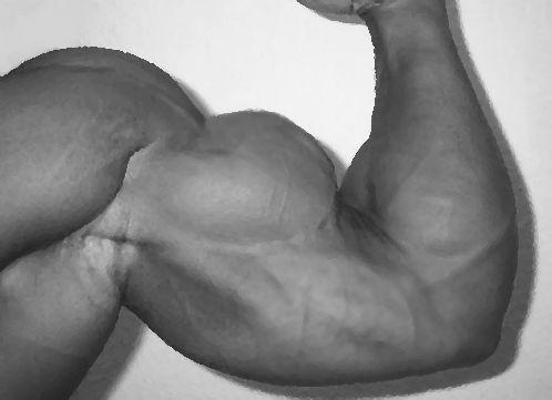 Rutina para biceps y triceps