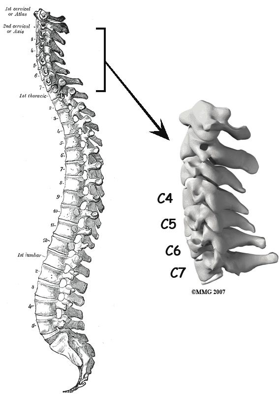 La osteocondrosis de la articulación del dedo