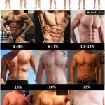 grasa-hombres