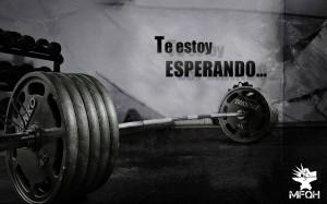 wallpaper-entrenamiento-fuerza